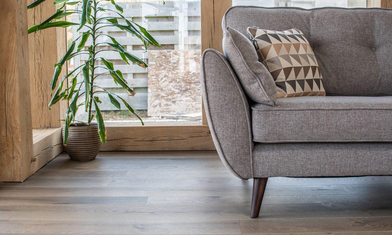 Sofa with plants and didgeridoo on a wood floor